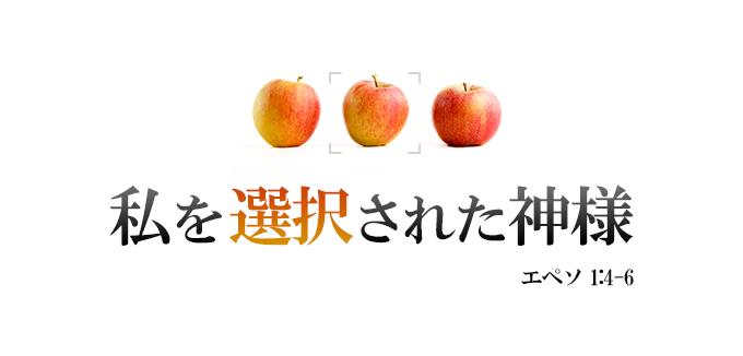 5_choice.jpg